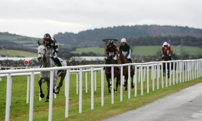 Horses go to post during day three of the Christmas Festival at Leopardstown Racecourse, Dublin, Ireland.